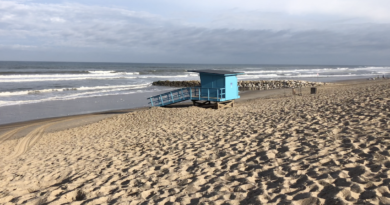 Plage sauvage le matin - Montalivet Surf TV