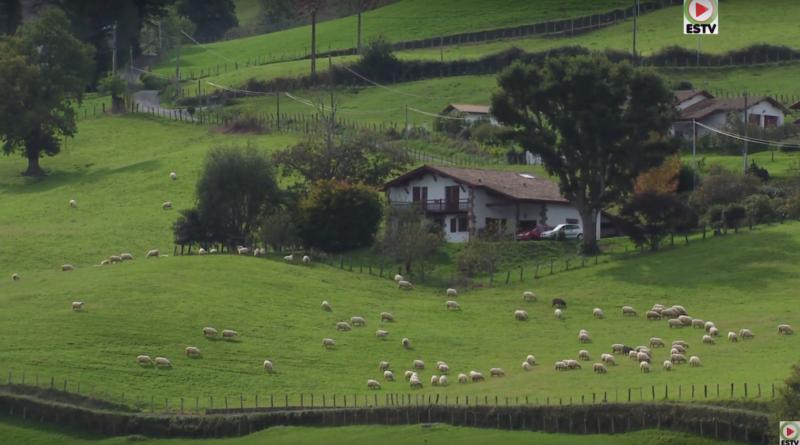 Bidarray: La verte vallée - Euskadi Surf TV
