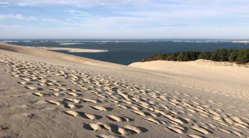 La Dune du Pilat en Hiver - Bordeaux Surf TV