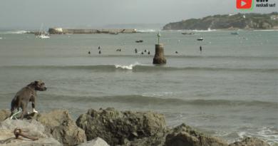 Socoa | Surfing en Longboard dans la Baie - Euskadi Surf TV